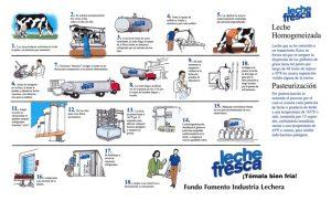 Descarga la guía oficial imprimible del proceso de elaboración de leche fresca de Puerto Rico